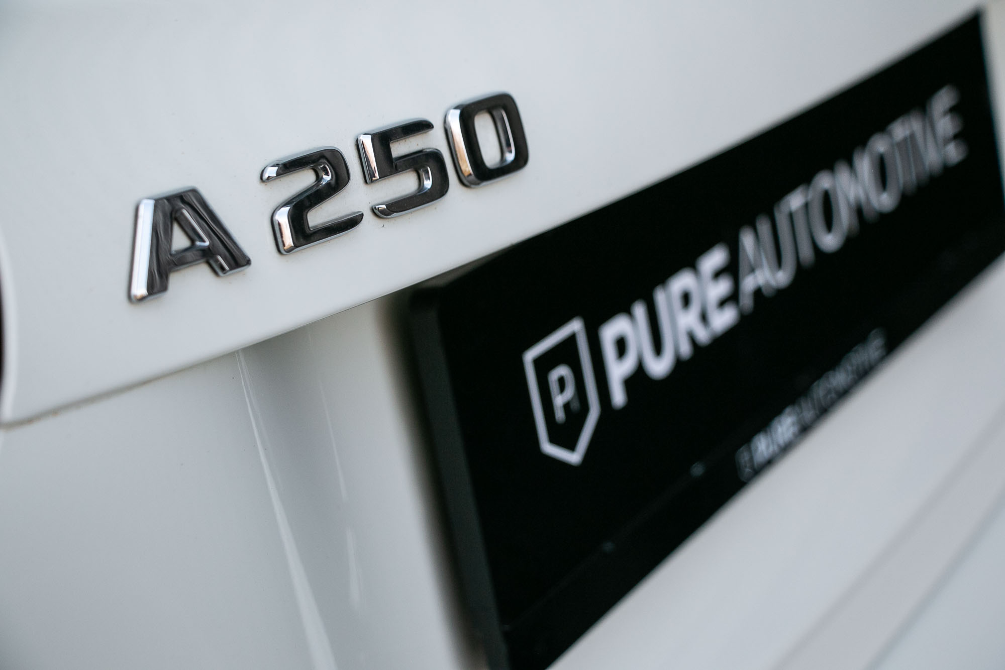 PURE_250WIT-19